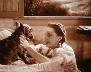 Dorothy-And-Toto-For-The-Lovely-Mackenzie-3-toto-the-wizard-of-oz-17564699-500-400